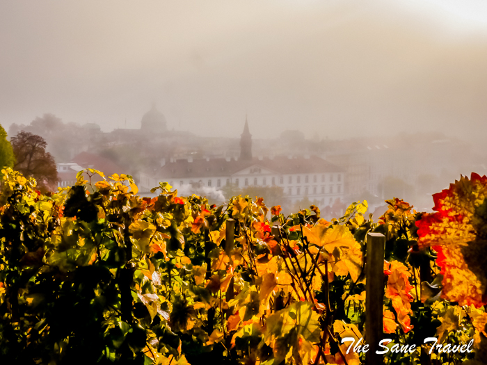 prague autumn www.thesanetravel.com 1570238