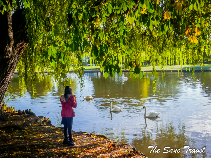 stratford upon avon autumn www.thesanetravel.com 1550713