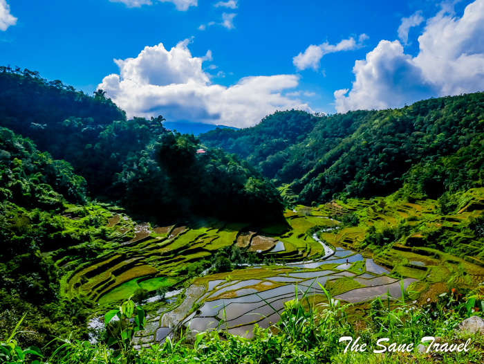 4 rice terraces philippines www.thesanetravel.com 1160548