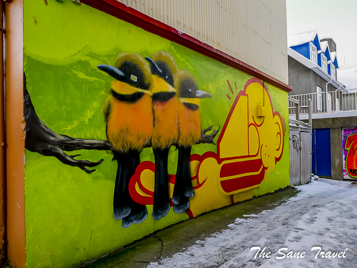 16 colours of reykjavik thesanetravel.com 1350402