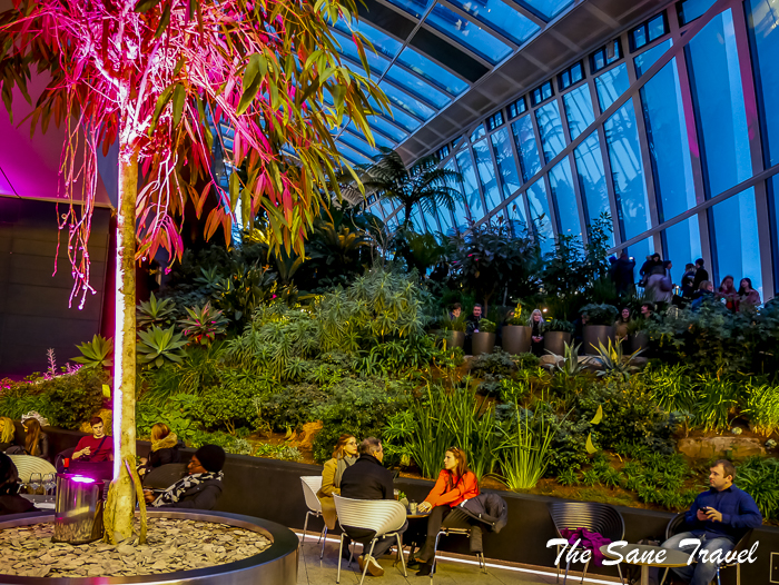 42 sky garden london thesanetravel.com 1370458