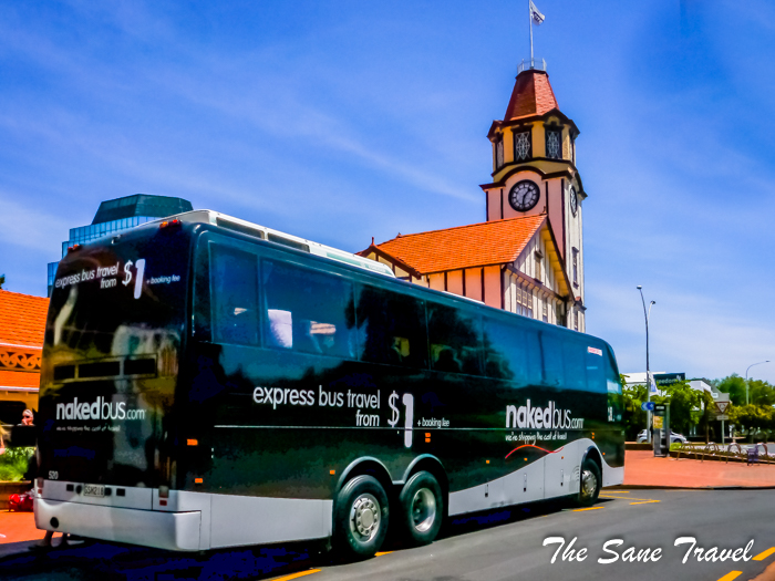 1 naked bus new zealand www.thesanetravel.com 1330764