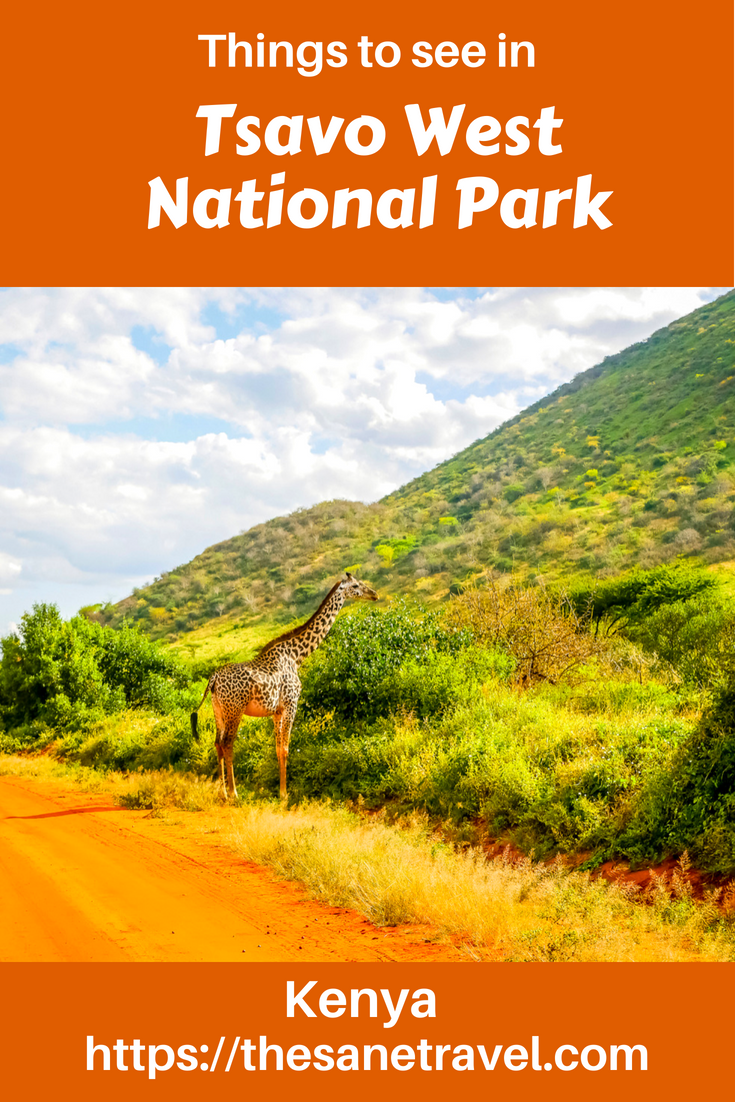 If you think about places to visit in Kenya, make sure to include Tsavo West National park on your list. Tsavo West and Tsavo East together form one of the largest national parks in the world. It's lesser known due to its large size and a smaller concentration of wildlife. I find Tsavo West a great combination of seeing wildlife and admiring stunning volcanic landscapes. So check yourself! #travel #travelAfrica #Kenyasafari #TsavoWest #KenyaNationalParks #travelblog #travelphotography